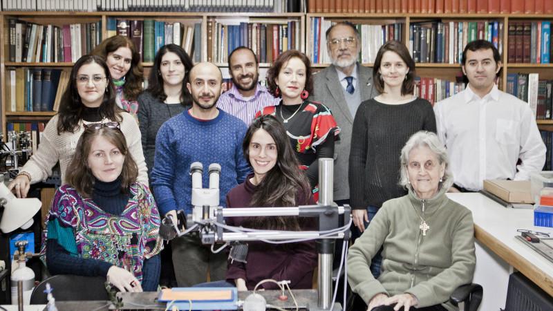Equipo del Centro de Fisiología Celular e Integrativa