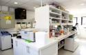 Laboratorio Genética (2)
