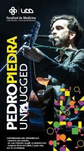 Pedro Piedra - copia