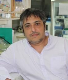 Marcelo Ezquer, PhD