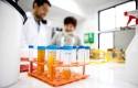 Desarrollo biotecnológico (4)