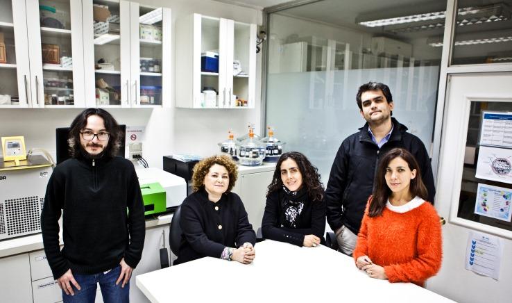 Equipo Centro de Química Médica