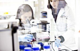 """Doctorado invita a sus alumnos a concurso interno """"Pasantía de Investigación en el Extranjero 2020"""""""