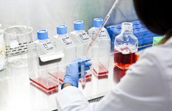 Investigadores del ICIM se adjudicaron fondos del Concurso IDeA I+D 2021
