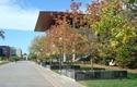 Facultad de Medicina de Stanford