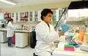 Laboratorio de Genética Humana