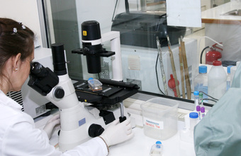 Fonis preselecciona propuestas UDD sobre investigación en salud