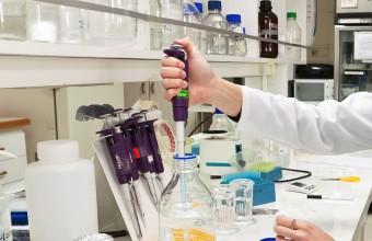 Investigadoras de la Facultad de Medicina se adjudican proyectos Fondecyt