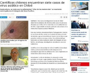Científicos chilenos encuentran siete casos de virus asiático en Chiloé