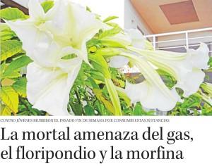 La mortal amenaza del gas, el floripondio y la morfina - Diario Concepción 25 de marzo 2015