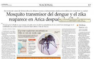 Mosquito Zika en Arica