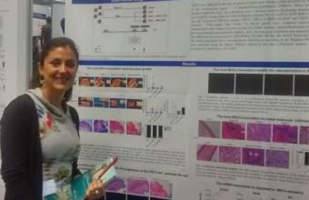 Investigadora UDD en Congreso internacional de Células madre en Cáncer y Medicina Regenerativa