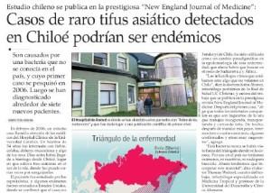 Casos de raro tifus asiático detectados en Chiloé podrían ser endémicos