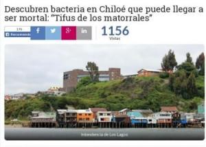 Descubren bacteria en Chiloé que puede llegar a ser mortal
