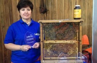 Investigadora UDD desarrolló producto para el control de bacteria que afecta a larvas de abejas