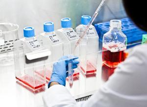 Investigadores del ICIM se adjudicaron proyectos Fondecyt