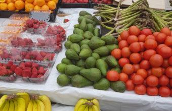 Nutrición y Dietética y Kinesiología se unen por un entorno saludable