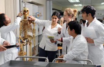 Medicina UDD primera en Chile según el Shanghai Ranking by Subject – Clinical Medicine 2019