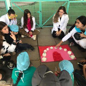 Futuros odontólogos enseñan prevención en salud oral a niños de Peñalolén