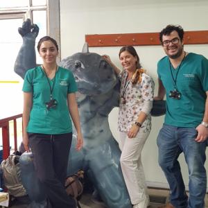 Odontología UDD realiza voluntariado con discapacitados